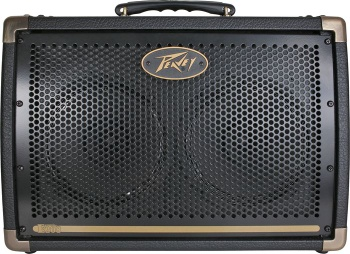 PEAVEY ECOUSTIC 208-120US