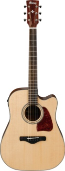 IBANEZ Artwood Series Acs Guitar
