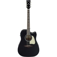 IBANEZ Artwood Solid Top DN Acoustic