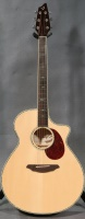 Breedlove Stage Dreadnought CE Sitka-Indian Rosewood