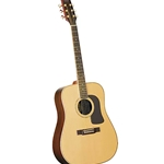 WASHBURN Dreadnought Acoustic Nat with Case
